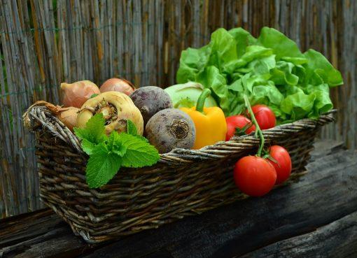 Les 20 aliments qui aide votre organisme à perdre du poids
